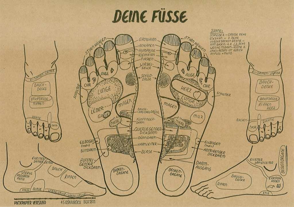 Poster Fußreflexzonen