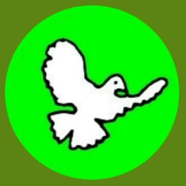 bf06 Taube grün