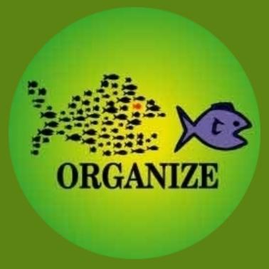ba23 Organize