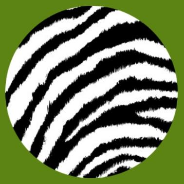bv20 Zebramuster