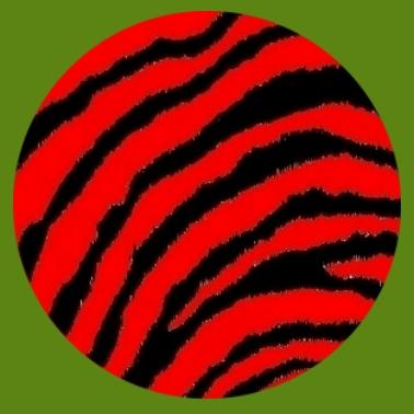 bv22 Zebramuster rot