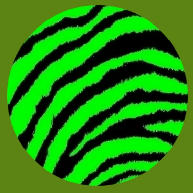 bv23 Zebramuster grün