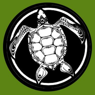 bv25 Schildkröte