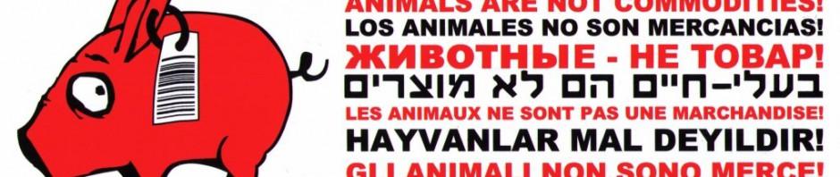 Tiere sind keine Ware