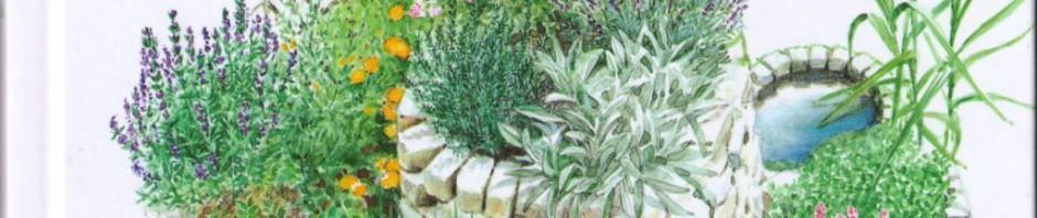Kräuterspirale Pala